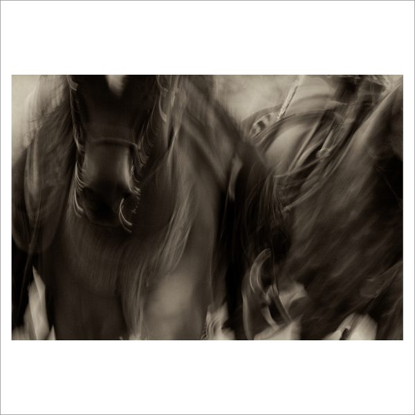 HORSES IN MOTION - 023 - LIMITED EDITION PRINT