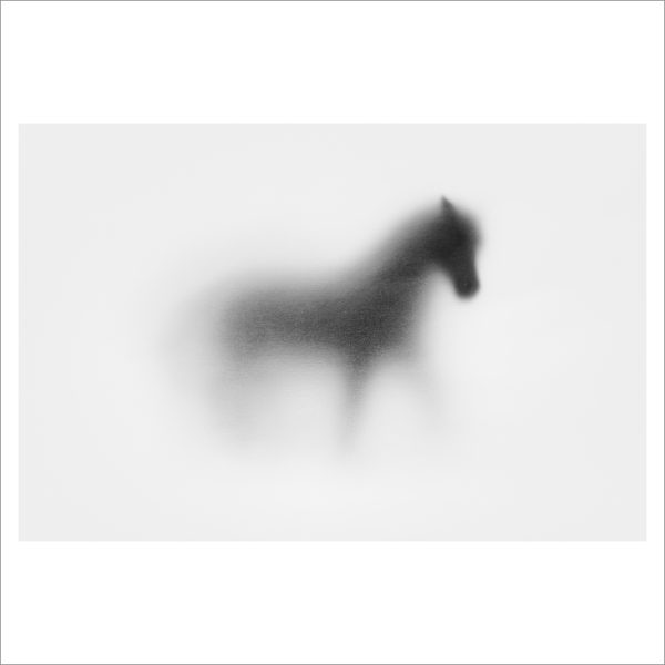 SHADOW HORSE - 124 LIMITED EDITION PRINT
