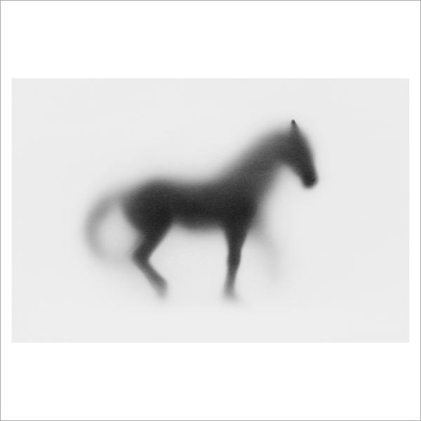 SHADOW HORSE - 125 LIMITED EDITION PRINT